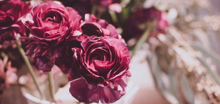 roses rosen rose bouqet blogging